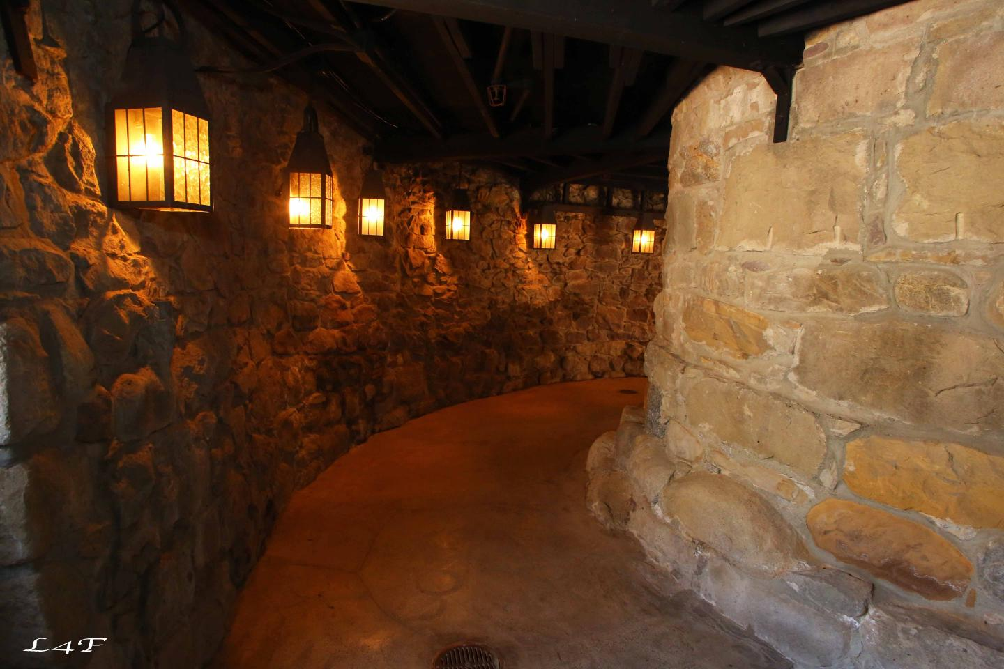 Newhall Mansion - Basement - 829